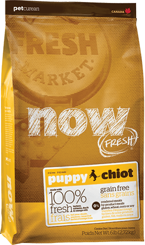 Grain Free Puppy Recipe
